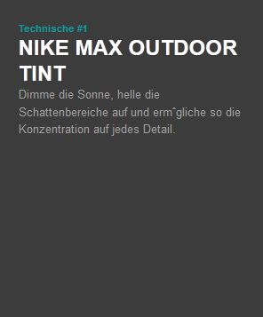 Nike Max Outdoor Tint