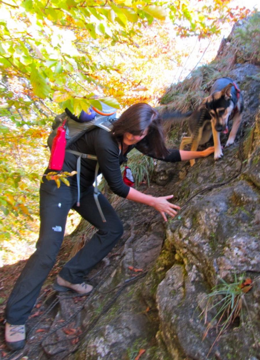 Trekking Apex Testbericht Zur North Pants The Women´s Face XOn8w0kP